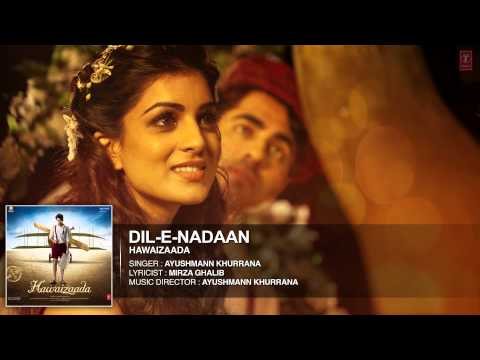 Dil-E-Nadaan Songs mp3 download and Lyrics