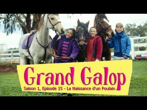 Poulain - Tous les épisodes de la saison 1 : http://www.youtube.com/playlist?list=PLgxJp6mMpLo6Ab4hCEZExGI65UBWFFpGW Épisode 1 : http://youtu.be/foBLUHu9Luw Épisode 2 ...