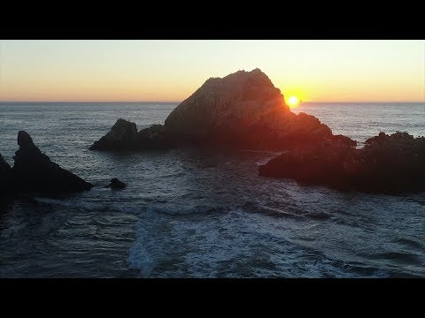SAND (Science And Non-Duality) Video: Life As One Interdependent Whole