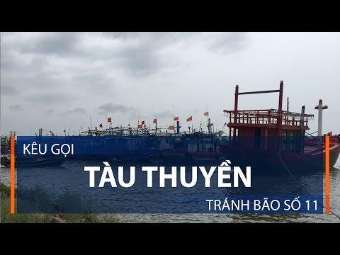 Kêu gọi tàu thuyền tránh bão số 11 | VTC1 - Thời lượng: 83 giây.