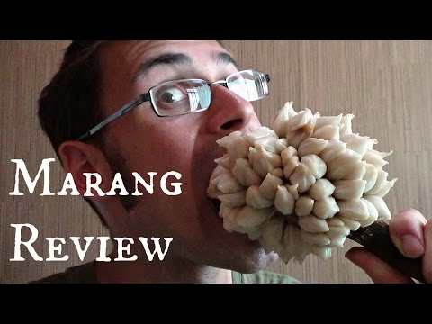 Marang Fruit Review - Weird Fruit Explorer in the Philippines - Ep 85