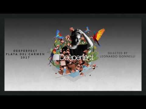 Leonardo Gonnelli - She Likes It (Original Mix)