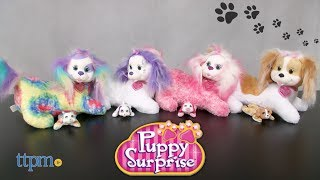 The surprises never end with Puppy Surprise! Collect four new mommy dogs with new looks! Mati, Kiki, Tory, and Stormy come with either three, four, or five puppies! One will even make barking sounds! Watch TTPM unbox these cute dogs and pups in this video review! For full review and shopping info► https://ttpm.com/p/23036/just-play/puppy-surprise-tory-and-her-puppies/?ref=ythttps://ttpm.com/p/23035/just-play/puppy-surprise-stormy-and-her-puppies/?ref=ythttps://ttpm.com/p/23034/just-play/puppy-surprise-mati-and-her-puppies/?ref=ythttps://ttpm.com/p/23033/just-play/puppy-surprise-kiki-and-her-puppies/?ref=ytProduct Info: New Puppy Surprise stuffed animals include four new mother dogs and puppies that make barking sound effects. Collect Mati, Kiki, Stormy, and Tory. How many puppies will each mother dog have? Three, four, or five? A fun surprise for kids who like stuffed animals and dogs.✮SEE MORE TOYS✮ARTSPLASH 3D LIQUID ART:https://ttpm.com/p/23570/mattel/artsplash-3d-liquid-art/?ref=ytDC SUPER HERO GIRLS FROST:https://ttpm.com/p/23551/mattel/dc-super-hero-girls-frost/?ref=ytMARVEL SPIDER-MAN SWING AND SLING SPIDEY: https://ttpm.com/p/23125/just-play/marvel-spiderman-swing-and-sling-spidey/?ref=yt✮SUBSCRIBE TTPM Toy Reviews✮https://www.youtube.com/c/ttpm✮SUBSCRIBE TTPM Baby Gear Reviews✮https://www.youtube.com/c/ttpmbaby✮SUBSCRIBE TTPM Pet Toys & Gear Reviews✮https://www.youtube.com/c/ttpmpets✮SUBSCRIBE TTPM First Look Toys Unboxing✮https://www.youtube.com/c/ttpmfirstlooktoys✮FOLLOW US✮Facebook: https://www.facebook.com/TTPMOfficialTwitter: https://twitter.com/ttpmInstagram: https://instagram.com/ttpmofficial/Pinterest: https://www.pinterest.com/ttpmofficial/Snapchat: TTPMOfficial: https://www.snapchat.com/add/ttpmofficial✮FOLLOW TTPM Baby✮Facebook: https://www.facebook.com/TTPMBaby/Twitter: https://twitter.com/TTPMbabyInstagram: https://www.instagram.com/ttpmbaby/✮FOLLOW TTPM Pets✮Facebook: https://www.facebook.com/TTPMPetsTwitter: https://twitter.com/TTPMPetsInstag