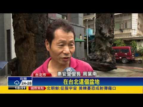 這位建商在台北市整地時挖出這塊「長達30公尺的千年烏木」,一聽到它的價值每個人下巴馬上都掉了下來!