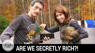 5. The Dirt: How We Make Money On Our Off-Grid Homestead