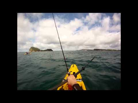 Barracuda Fish Pro kayak fishing session with YakAttack