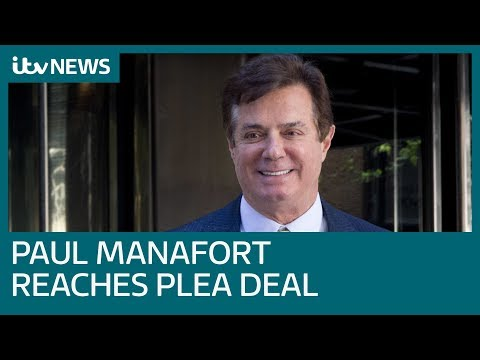 Trump's ex-campaign chairman Paul Manafort reaches plea deal with US prosecutors| ITV News