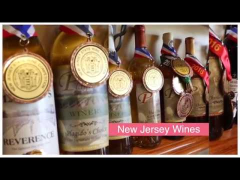 At The Vineyard Show Hawk Haven Winery  Episode 3  #HawkHaven #New Jersey