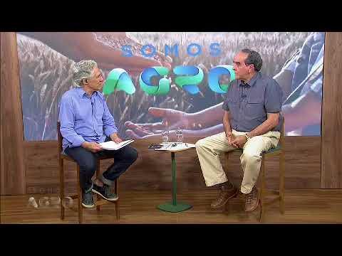 Terra Viva: Saiba mais sobre a equinocultura no Brasil