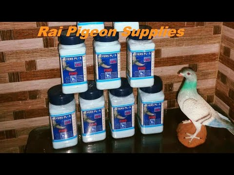 Beyers Bath Salt For Pigeons