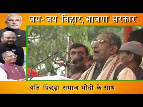 Bihar Will Go Saffron In 2015 : Nand Kishore Yadav