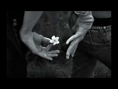 Tekst piosenki Ingrid Michaelson - My Darling po polsku