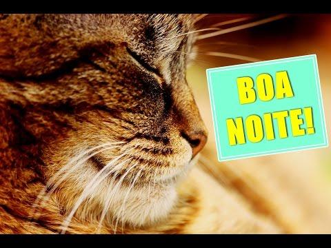 Imagens boa noite - Mensagem de WHATSAPP : Boa noite!  Linda mensagem de boa noite!