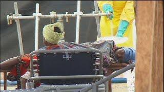 Лихорадка Эбола - факты и комментарии - Science