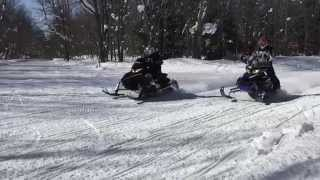 7. Arctic Cat ZR 8000 Cat Walking,Racing and Pictures
