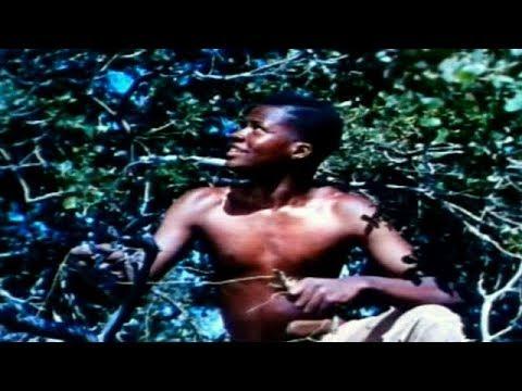 THE MARK OF THE HAWK | Eartha Kitt | Sidney Poitier | Full Length Drama Movie | English | HD | 720p