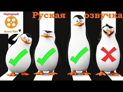 Озвучка пингвинов Мадагаскара - Народный КиноЛяп