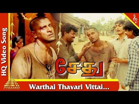 Video Warthai Thavari Vittai Video Song |Sethu Tamil Movie Songs | Vikram | Sriman | Pyramid Music download in MP3, 3GP, MP4, WEBM, AVI, FLV January 2017