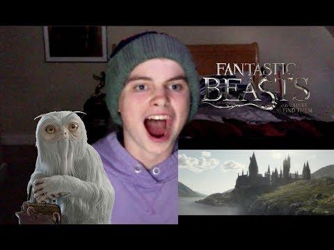 Fantastic Beasts 2: The Crimes Of Grindelwald Trailer - Reaction!