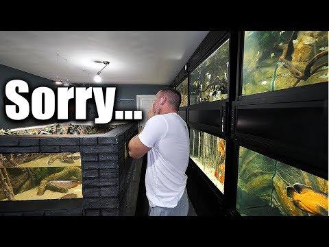 Aquarium update_Akvárium. Heti legjobbak
