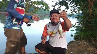 Video Umpan Ampuh Mancing Ikan Baung Part 1 MP3, 3GP, MP4, WEBM, AVI, FLV Mei 2019