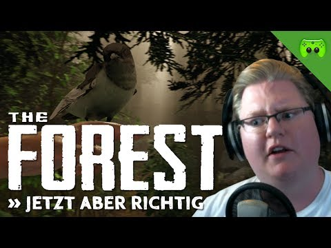 THE FOREST # 2 - Jetzt aber richtig «» Let's Play The Forest | HD