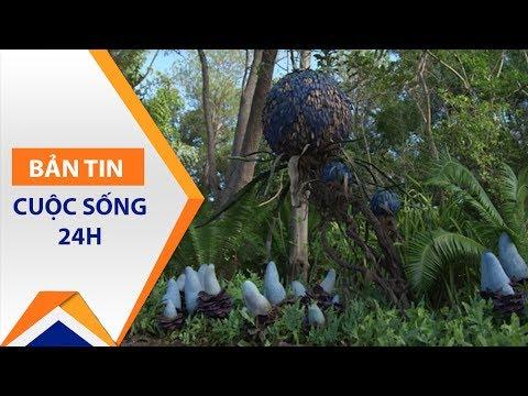 Hoành tráng công viên Avatar ngoài đời thực | VTC1 - Thời lượng: 114 giây.