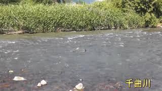 上田市の自然