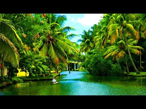 Most Beautiful Alappuzha Backwaters