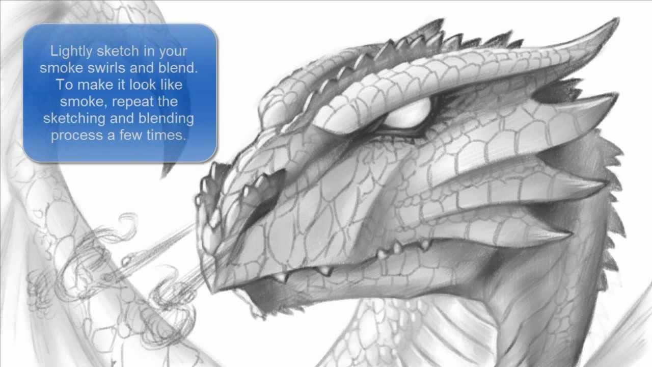 How To Draw A Dragon Head Hd Images And Wallpaper Digitalhint