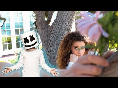 Marshmello & Anne-Marie - FRIENDS (Music Video by Sofie Dossi)