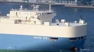 SALVIA ACE - MOL vehicles carrier - 2015