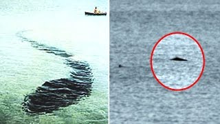 5 unexplained mysteries that still need answers. In this video we take a look at 5 unexplained mysteries that still need answers.Unexplained mysteries interests many of us and in this video we take a look at 5 mysteries that still need answers.Number 5 - Rings Of The Amazon ForestNumber 4 - Cameron Lake MonsterNumber 3 - Hook Island Sea MonsterNumber 2 - UFO EncounterNumber 1 - Bizarre House HauntingThank you for watching!Thank you to CO.AG music for providing the background music to this video.