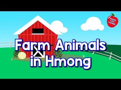 Hmong Channel Farm Animals Hmong Kids Channel