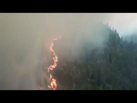 Σουηδία: Πολιτική αντιπαράθεση για τις δασικές πυρκαγιές …