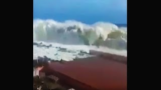 Video how did they survive this last wave? (emotional) MP3, 3GP, MP4, WEBM, AVI, FLV Juli 2019