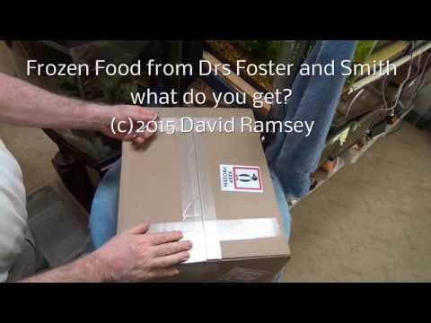 Frozen Fish Food Delivery