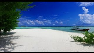 Karimunjawa Indonesia  city photo : wonderful trip in Karimunjawa