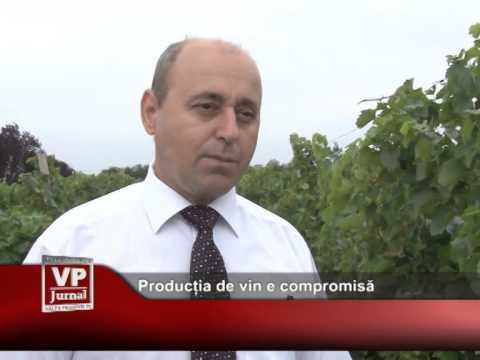 Producția de vin e compromisă