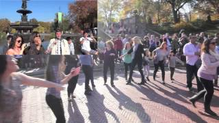 Video Greg and Gary's Surprise Flash Mob Proposal in Central Park MP3, 3GP, MP4, WEBM, AVI, FLV Agustus 2018