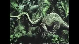 Planeta Záhad 08 - Dobře utajené příšery