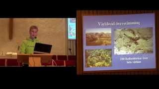 Thumbnail for video: Grunderna i Skapelsetron - Samuel Ärlebrandt