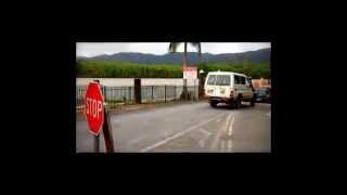 Daintree River Ferry Bus Returining From Cape Tribulation -- Cape Trib Connections