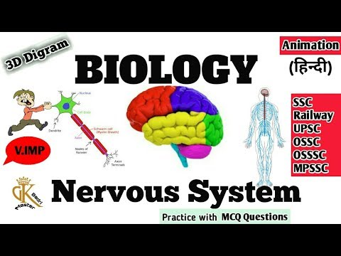 Central Nervous System Topic in Hindi || Biology || Brain, Spinal Cord || Science || GK MASTER