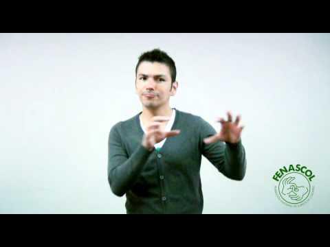 Organización Día Internacional del sordo 2012