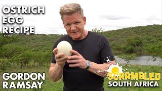 Gordon Ramsay Makes OSTRICH Scrambled Eggs In South Africa | Scrambled by Gordon Ramsay