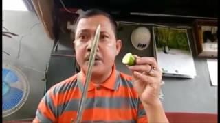 Video IWAN BOPENG DITANTANG TNI PAKE ILMU KEBAL. MP3, 3GP, MP4, WEBM, AVI, FLV Juli 2018