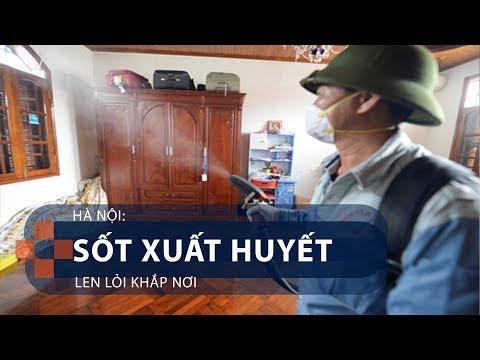 Hà Nội: Sốt xuất huyết len lỏi khắp nơi | VTC1 - Thời lượng: 89 giây.