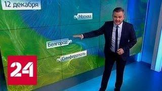 """""""Погода 24"""": арктическое вторжение достигло Причерноморья"""