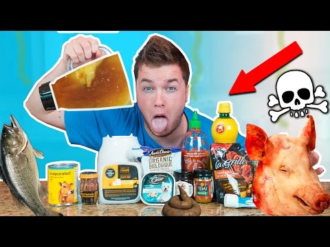 GROSSEST DRINK IN THE WORLD CHALLENGE! Dog Food, Fish & More!  (EXTREMELY DANGEROUS)